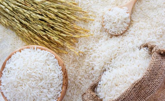 Việt Nam sẽ có nhà máy sản xuất lúa gạo hiện đại nhất châu Á - Báo Thái  Bình điện tử